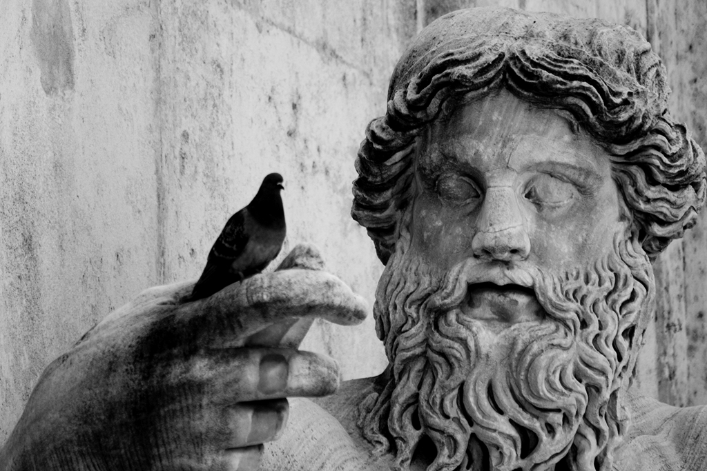 rome-statue-and-bird