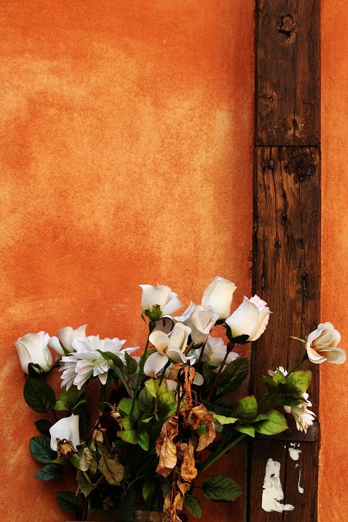 rome-walls