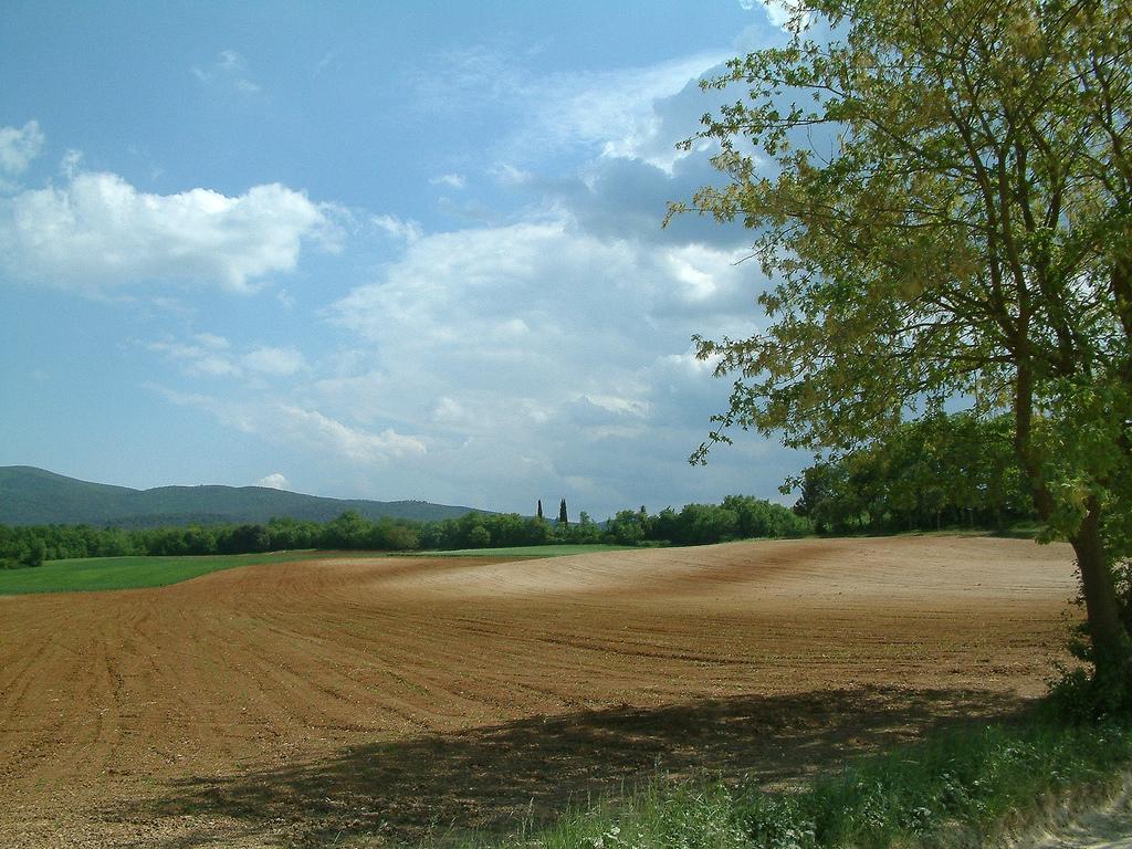 tuscanian-landscape