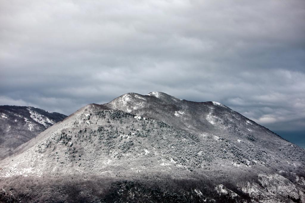 Coccovello - 2010 Snow