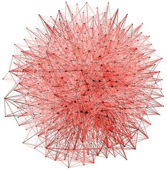 patrizia pepe crisi network